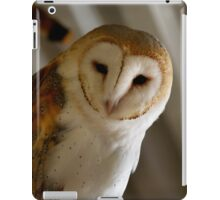 Wild Barn Owl Watching From its Perch Inside a Rustic Barn Building iPad Case/Skin