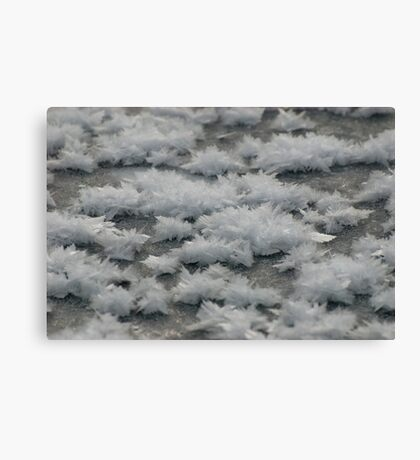 Frost Flash Lake Canvas Print