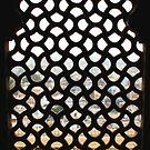 Carved Window, City Palace Udaipur, Rajasthan, India by RIYAZ POCKETWALA