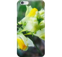 Linaria Flower iPhone Case/Skin