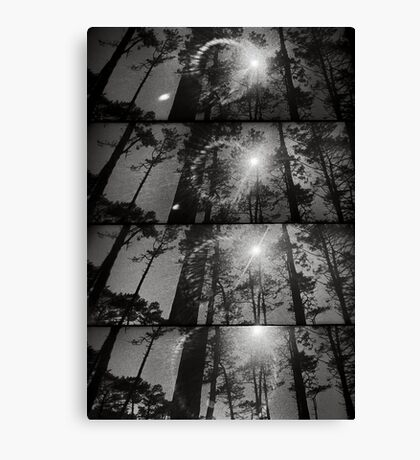 And also the trees Canvas Print