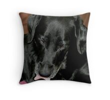 I Don't Want to be in Pictures ! Throw Pillow