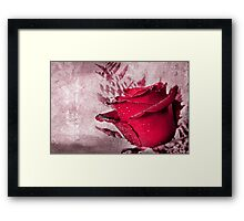 Deeply loved Framed Print
