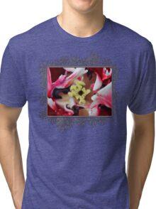 Double Late Peony-Flowered Tulip named Horizon Tri-blend T-Shirt