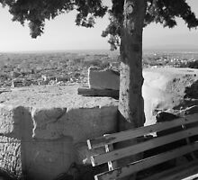 Highest Point of the City - Acropolis by AJArrowsmith
