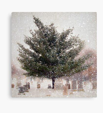 Snow is Silence Canvas Print
