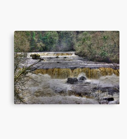The Falls - River Ure Canvas Print