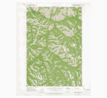 USGS Topo Map Oregon Bingham Springs 279043 1963 24000 One Piece - Short Sleeve