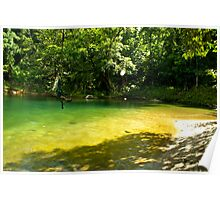 Backyard Swimming - Marquette Creek, Tully Nth Qld Poster