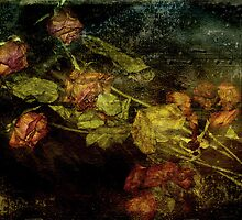 Ashes of Roses by Catherine Hamilton-Veal  ©