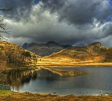 Blea Tarn ,A January View by Jamie  Green