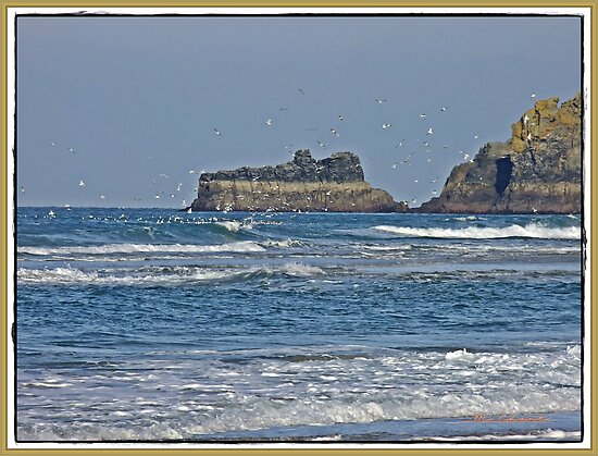""""""" The high tide mark can be seen at the top of the rock"""" by mrcoradour"""