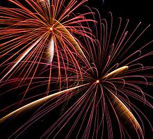 Fireworks by Malcolm Katon