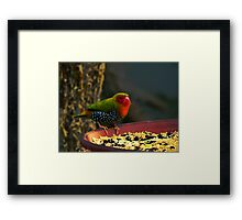Color Confusion Framed Print
