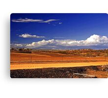 Toodyay After The Bushfire Canvas Print