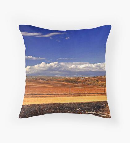 Toodyay After The Bushfire Throw Pillow