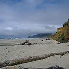 Beach at Lincoln city.... by Lonnie Ornie