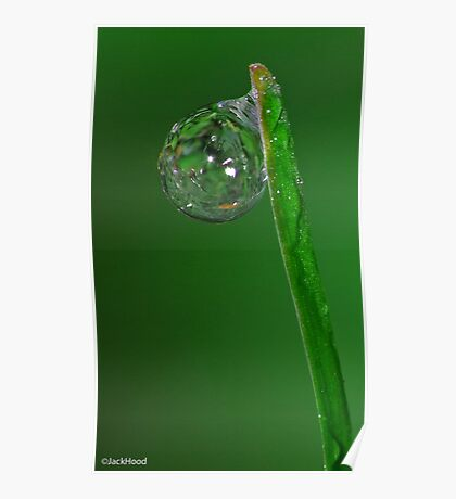 Single Droplet Poster