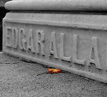 Edgar Allan by IntriguePhotog