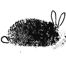 Fingerprint art  by patjila