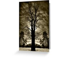 One, Two or Tree? Greeting Card