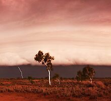 Pilbara Storm Cell by Sheldon Pettit