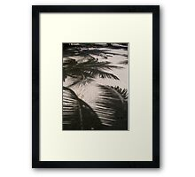 Shadows of Palm Trees on White Sand Beach on Tropical Belize Island Framed Print