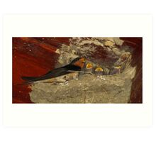 Family Sing Along!  (Barn Swallows) Art Print