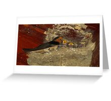 Family Sing Along!  (Barn Swallows) Greeting Card
