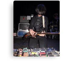 The Horrors Pedals Canvas Print