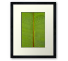 Tropical Lime Green Jungle Leaf Vein Stripe Pattern Framed Print