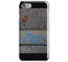 Art in Nature, Nature in Art iPhone Case/Skin
