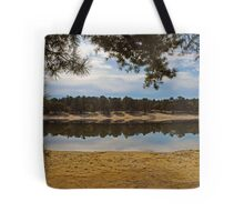 Worth Taking a Second Look Tote Bag
