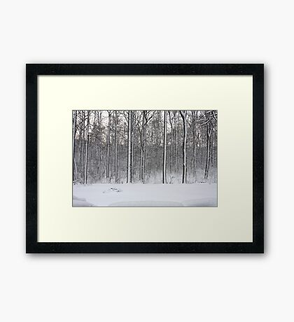 Snowstorm Aftermath Framed Print