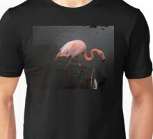 Hey that aint my reflection Unisex T-Shirt