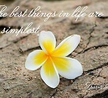 Simplicity by sparshahuja