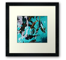 Fish From Above Framed Print