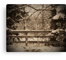 Fence and Snow Canvas Print