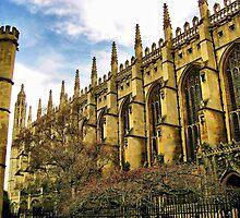 Cambridge - England # 1 by GUNN-PHOTOS