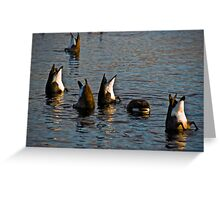 A bunch of bums! Greeting Card
