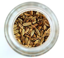 Aromatic Exotic Striped Indian Cuisine Fennel Seeds in Jar by HotHibiscus