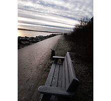 frosty seat Photographic Print