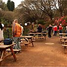 AND THERE THEY ARE - The Nikon photographers workshop by Magriet Meintjes