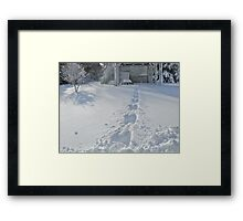 Puppy Tracks - Deep Snow - Sunny Day Framed Print