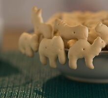 Morning Bowl Of Animals by crelow