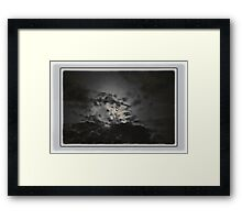 Bird in the clouds Framed Print