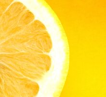 Healthy Fresh Bright Yellow Citrus Grapefruit Slice by HotHibiscus