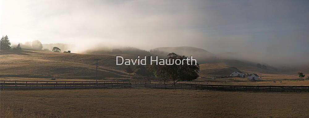 New Zealand sleepy farm by David Haworth