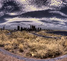 Perth City from Kings Park by BigAndRed