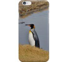 King Penguin iPhone Case/Skin